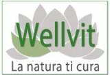 wellvit_banner